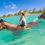 Pampered Ponies Grand Cayman Tour