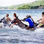 Beach Horseback Ride And Swim1